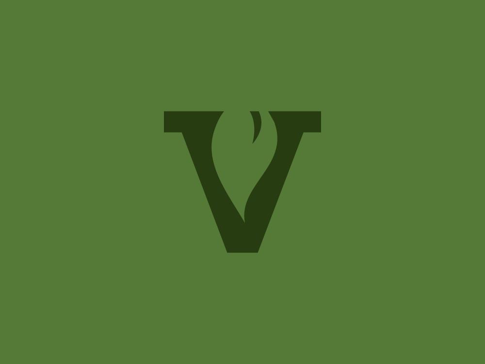Brand_VS_1000x750